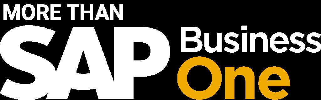 Sap Business One V2